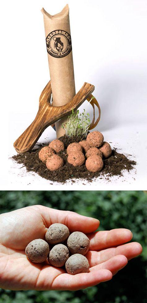 Seed bomb - gorilla gardening!