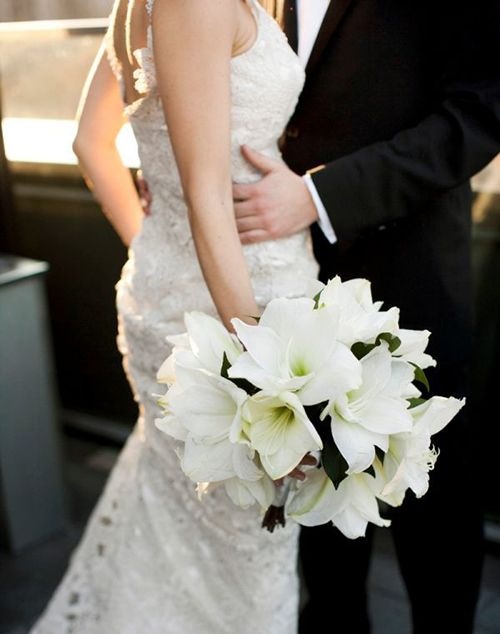 White Amaryllis Bouquet: Large, showy amaryllis blooms in crisp white make an utterly elegant statement.