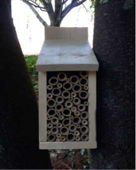 How To Make A Mason Bee Box