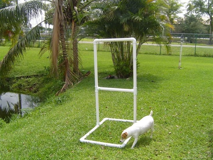 Best and easiest DIY PVC fold up shooting target.