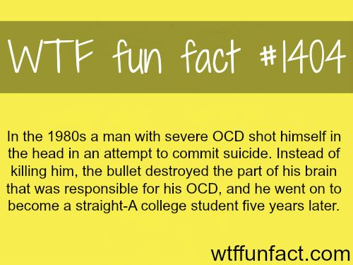 WTF Facts : funny, interesting awesome!