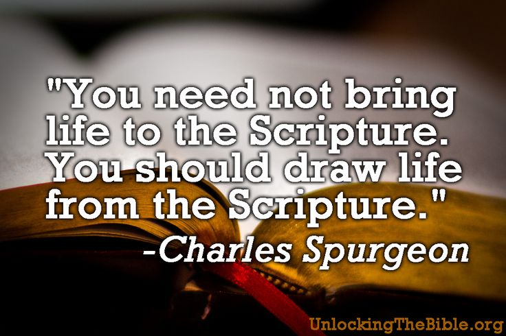"""""""You need not bring life to the Scripture. You should draw life from the Scripture."""" -Charles Spurgeon"""