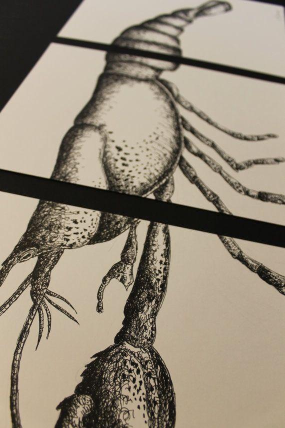 Lobster ink art animal in black and white ink by KapibaraArt