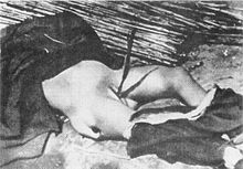 220px-Chinese_old_woman_raped_and_killed_by_Japanese_at_Tai'erzhuang.jpg (220×153)