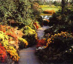 bellingrath garden oriental dragon christmas lights | 63 best images about The Gardens on Pinterest | Gardens ...