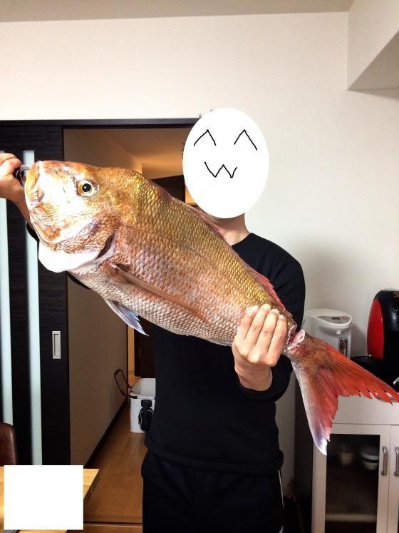 海釣りに行ってきたよwww →巨大な魚が釣れた結果www(画像あり)