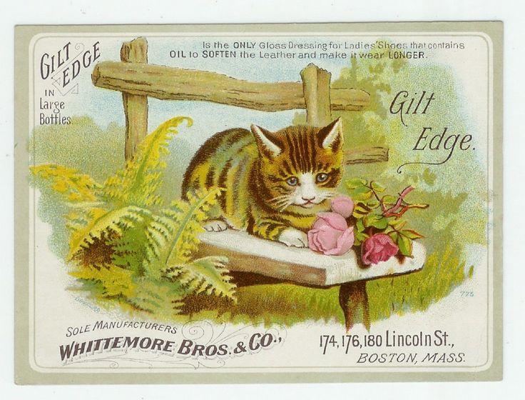 Trade Card Gilt Edge Shoe Polish Whittemore Bros Co Boston MA Cat Roses | eBay