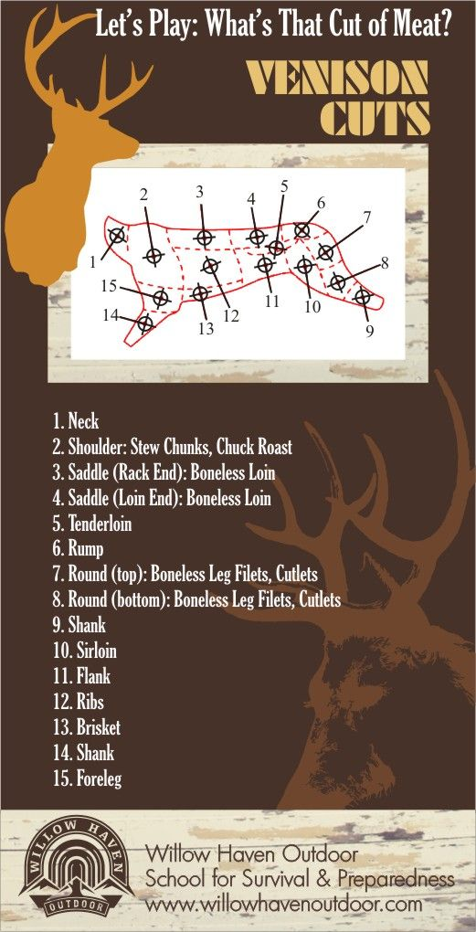 How well do you know your Venison (Deer) Meat Cuts? I like 3,4,5 and 10. Maybe 1,6,8,......Who am I kidding, I like the whole thing!!
