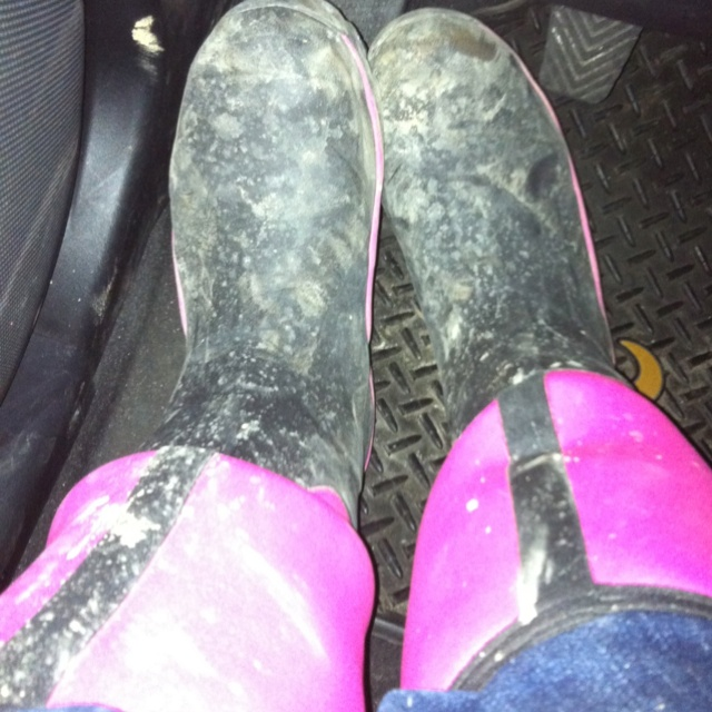 25  best ideas about Pink Muck Boots on Pinterest | Camo muck ...