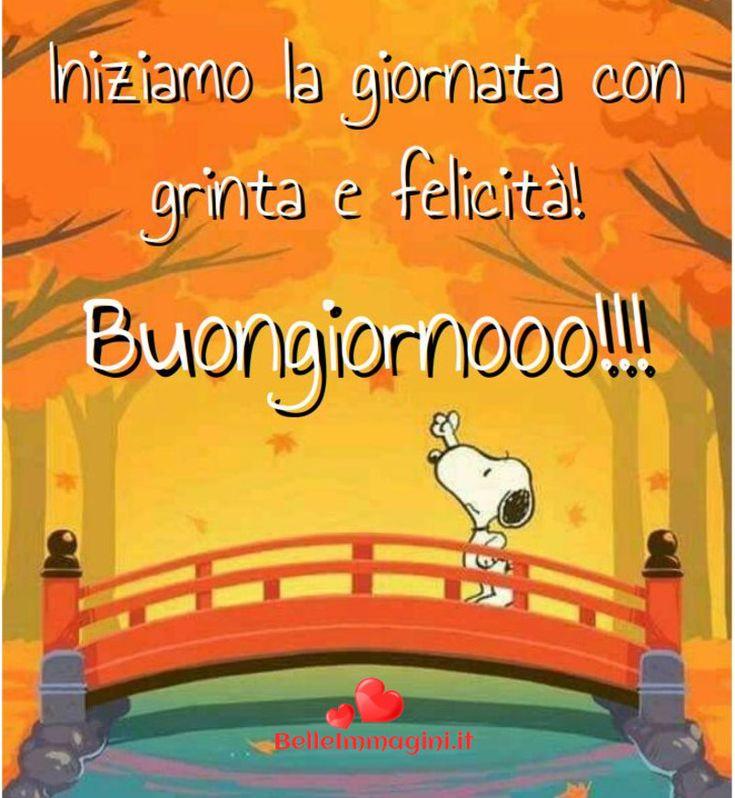 Buongiorno immagini belle per facebook e whatsapp for Immagini belle buongiorno amici