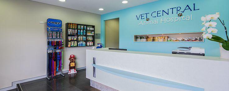 vet clinic interior design