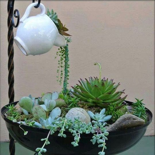 TEAPOT SUCCULENT GARDEN - how neat is this? Best of all, it is SO EASY to make! (Garden Diy Ideas)