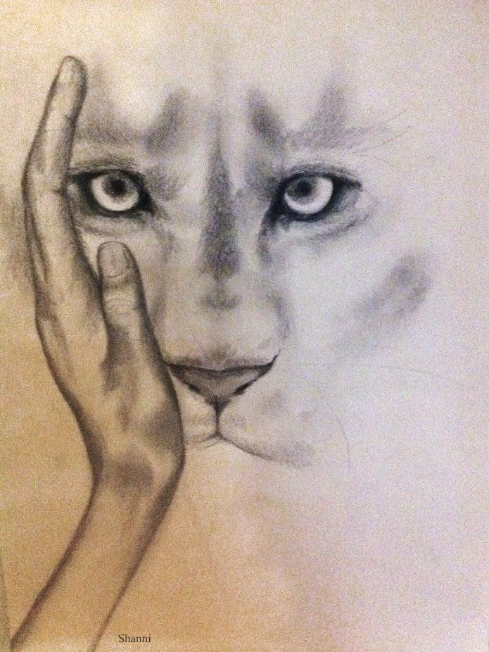 face, by shanni smith