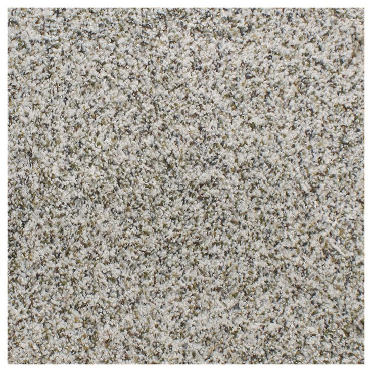 Shop Stainmaster Trusoft Gallery Brown Textured Indoor