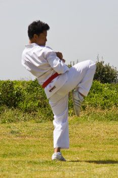 Your chamber is important for good taekwondo kicks