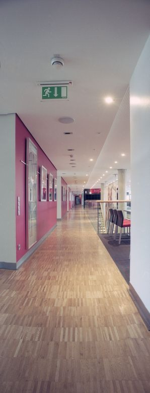 VFB Stuttgart - Mercedes Benz Arena 1200 m² of acacia parquet flooring were sealed with IRSA Platinum 2010 silk matt and IRSA Platinum 2030 ultra matt. To maintain the quality of the floor long-term IRSA Aqua Star (for a visual silky lustre) and Aqua Star R 9 (for matt surfaces) were used for the final care and cleaning.