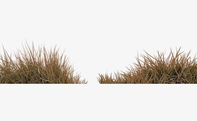 Brown Simple Grass Decoration Pattern In 2021 Grass Clipart Best Background Images Grass