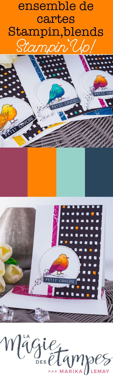 Un superbe ensemble de cartes coloriées avec les marqueurs à l'alcool Stampin'blends. Vous apprendrez comment mélanger les couleurs! #stampinup #stampinblends #coloriage #marqueursalcool