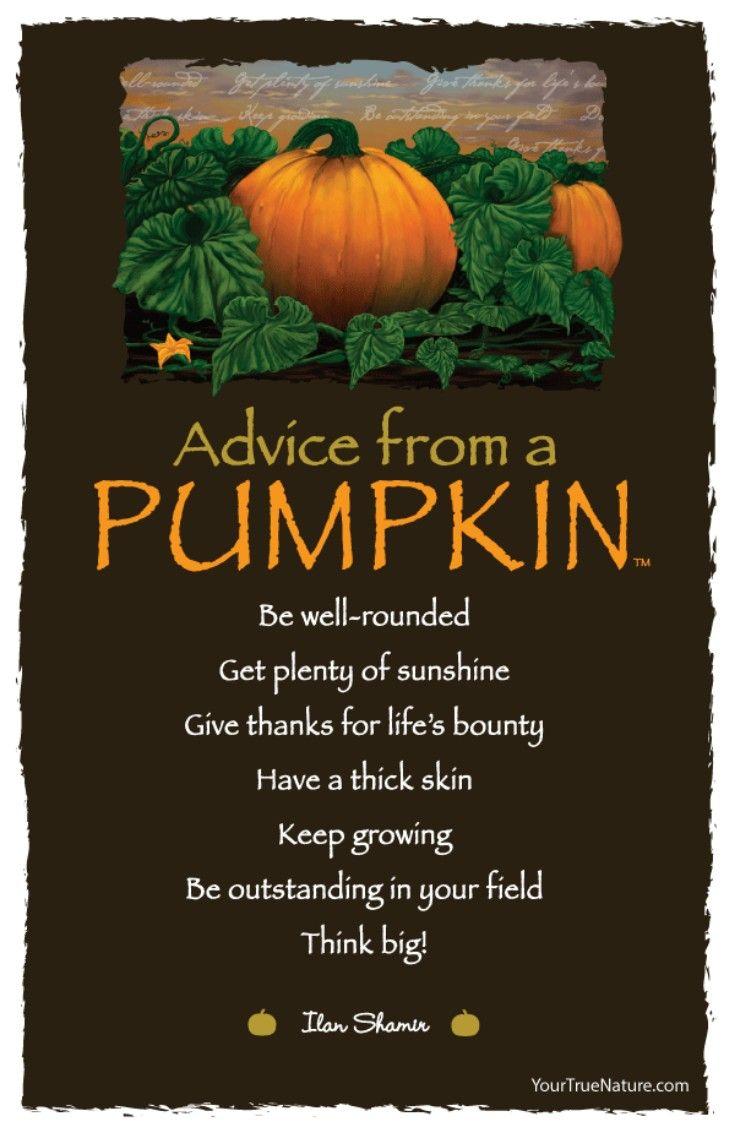 Best 20+ Happy halloween quotes ideas on Pinterest   Halloween ...