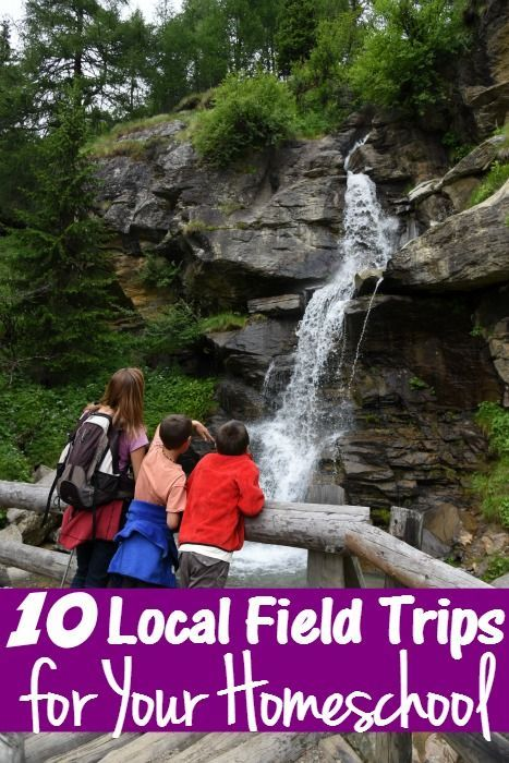 Homeschooling Made Easy 10 Fun Local Field Trips for Your Homeschool - Any trip around town can be made into a homeschool field trips. Here are 10 ideas!