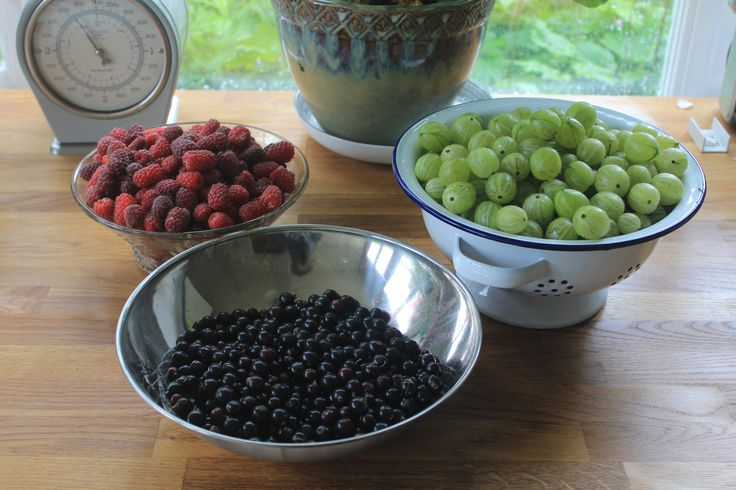 Particularly good year for soft fruits. Replanted blackberries now starting to bear decent crops and the loganberries just keep on going