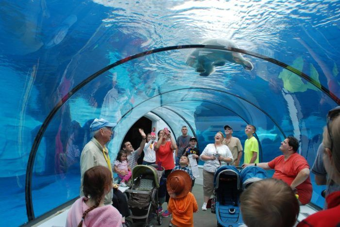 11 Kid-Friendly Destinations In Michigan That Are Just As Much Fun For Grown-Ups