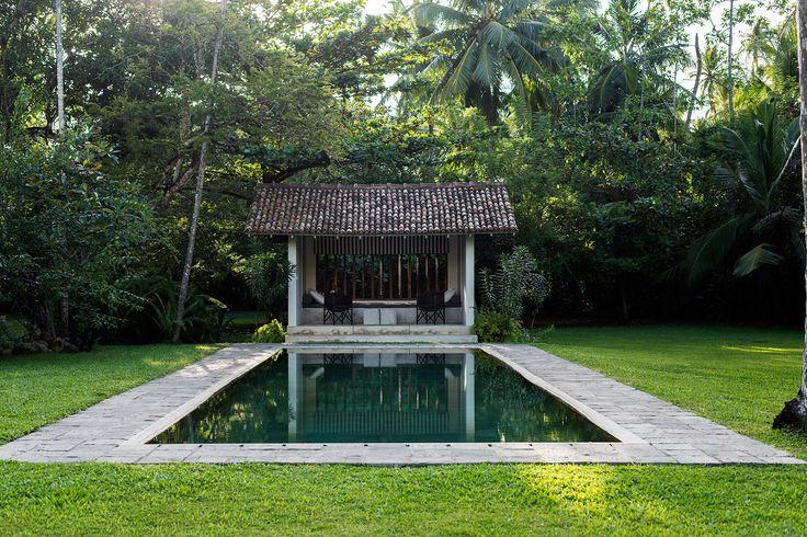 Resort-style swimming pool from the Sri Lanka home of interior designer Judith Stewart. Photography: Nicholas Watt