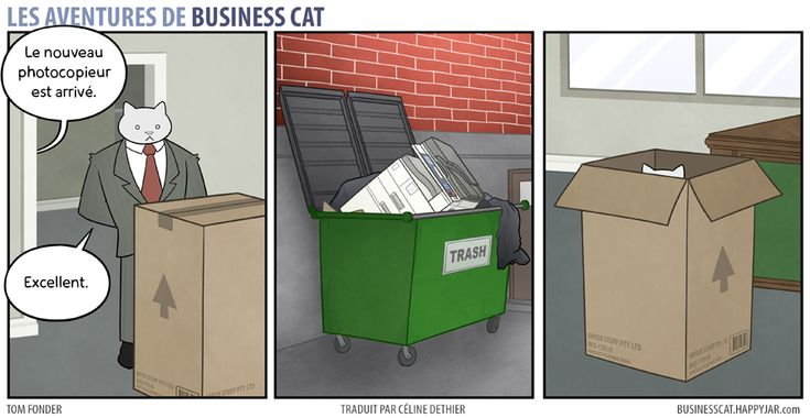business-cat-1