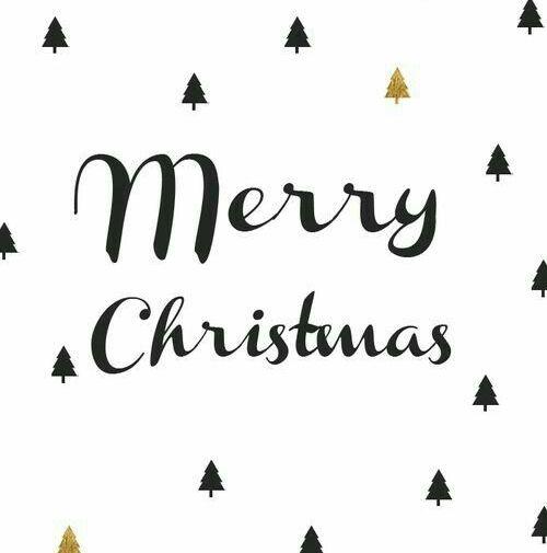 Hoy toca disfrutar, reír, emocionarse, amar... !It's the most wonderful time of the year.    Todo el equipo de Zacaris os deseamos: ¡Feliz noche a todas/os! Y esperamos que os traigan muchos zapatos.  #feliznavidad #merrychristmas #happynight #regalosbonitos #regalosqueenamoran #shoponline #shoesshoponline #zacaris #xmasparty #joy #merryxmas #regalazapatos Shop online: www.zacaris.com Y también empieza la cuenta atrás para Fin de Año  y Reyes ♛
