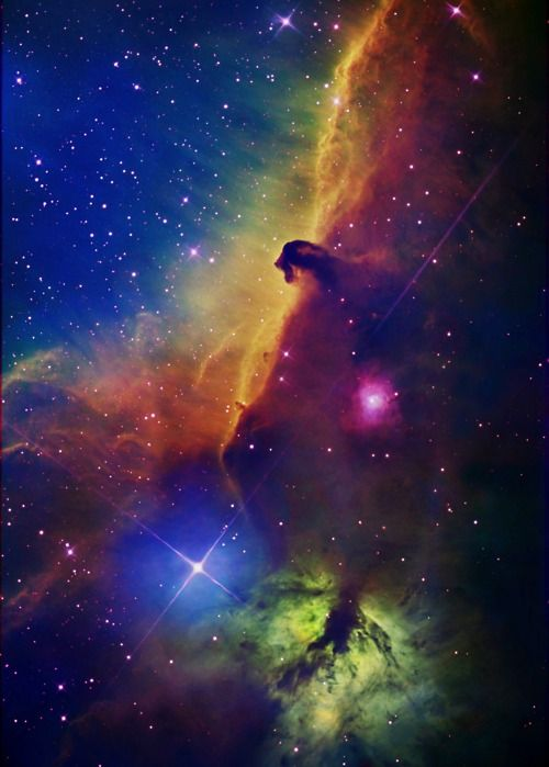 The Horsehead Nebula, aka Barnard 33. It's about1500 light years from Earth.