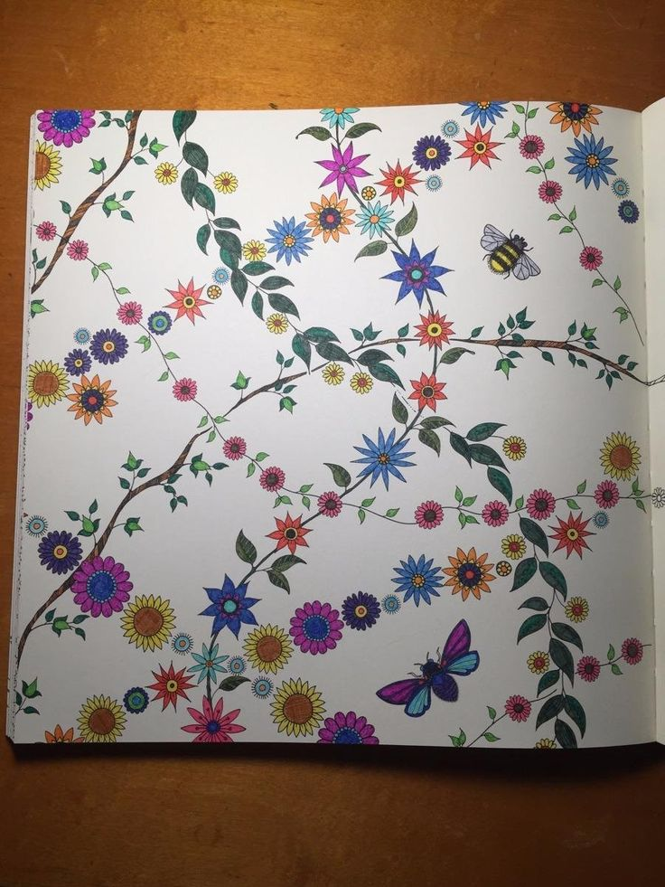1000 Ideas About Secret Garden Coloring Book On Pinterest