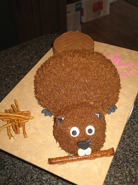 Beaver Cake Animal Flickr Photo Sharing cakepins.com