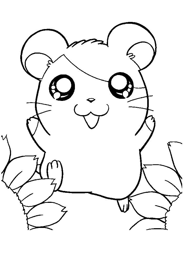 Cute Hamster Coloring Pages In 2020 Animal Coloring Pages Cute Coloring Pages Mickey Mouse Coloring Pages