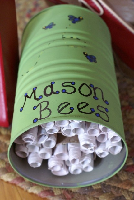 wild bee house made from tin can, toilet paper cardboard and rolled up paper! Definitely letting the kids do this!