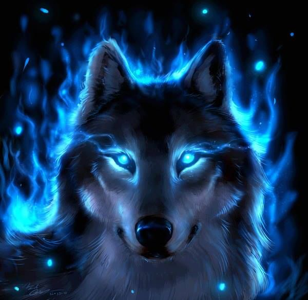 Spiritstar (me) god of anime wolves :3 | FIRE & ICE ...
