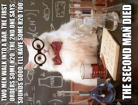 H2O2 second man died chemistry cat meme | Funny Pictures ...
