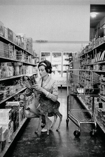 Audrey Hepburn shopping with her pet deer in Beverly Hills 1958.