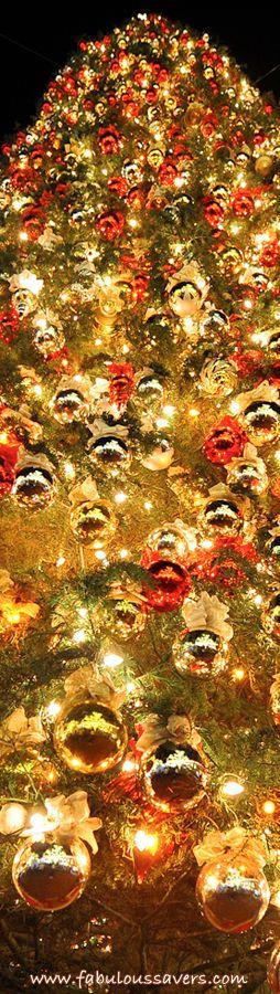 fabuloussaverscomfree desktop wallpaper of - photo #1