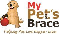 Dog Leg Brace ACL | Leg Braces For Dogs| Stifle Brace for Dogs | Conservative Management | Dog Hock Braces | MyPetsBrace.com
