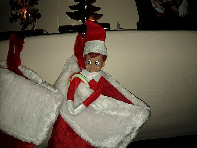 I seriously do not understand this obsession with elves.  Honestly - this would terrify me.  YUCKO!