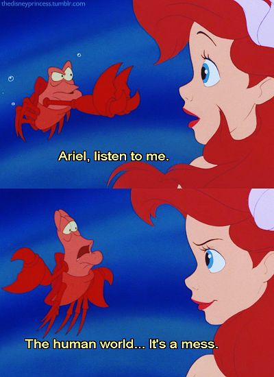 Sebastian knows what's up