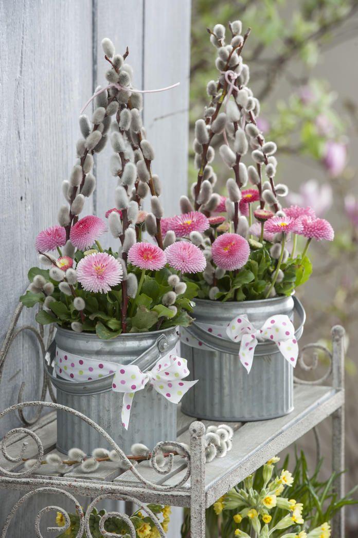 Blumenarrangement aus Bellis und Weidenkätzchen