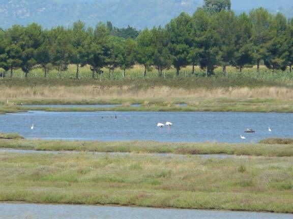Orti Lagoon