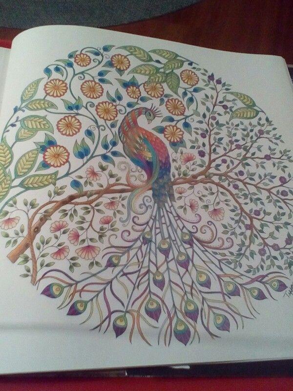Secret Garden Coloring Book With Staedtler Ergo Soft Coloured Pencils