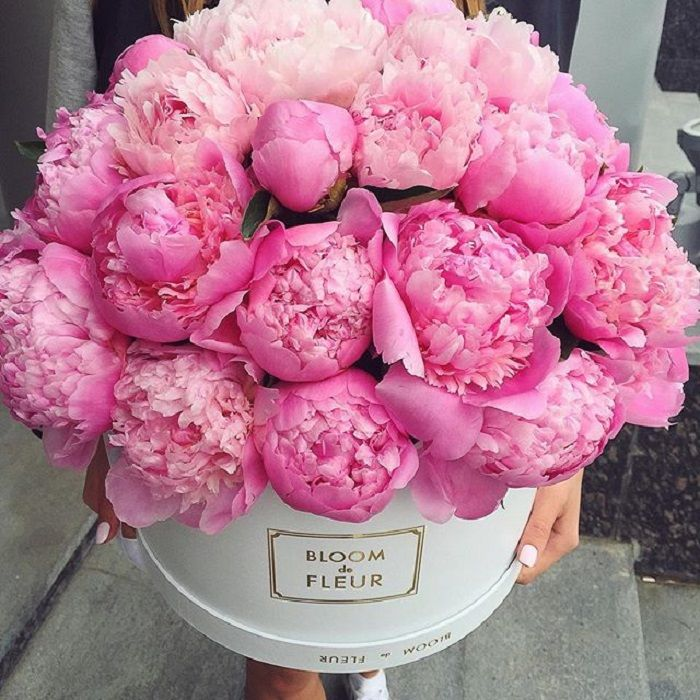 Klassische Brautsträuße mit Pfingstrosen | Friedatheres.com  pink peonies  Blumen von Bloom de Fleur