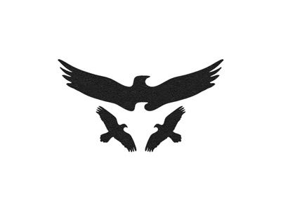 "Interesting use of negative space or ""how many eagles do you see?"" 