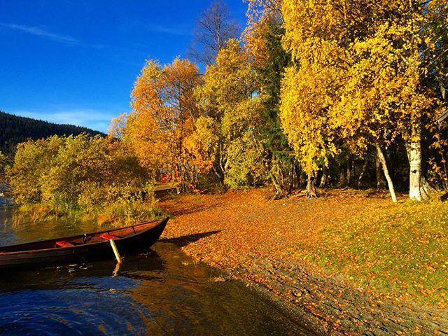 Måndag den femte oktober. En minus i morse. Den här hösten levererar sannerligen. Om det är möjligt att sitta i förarsätet och samtidigt sitta bredvid och åka med, så är det ungefär så det känns just nu   #roadtrip #åre #wanderlust