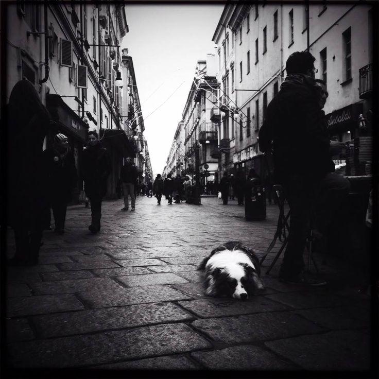 Via Garibaldi, Turin