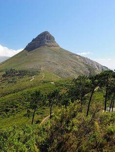 Lion's Head | Cape Town