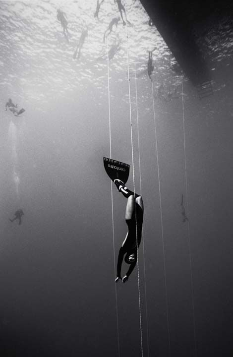☆ Guillaume Nery Freediving :¦: Underwater Photographer Wayne Levin ☆